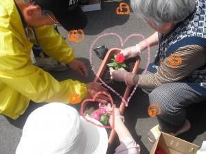 花の植え付け8